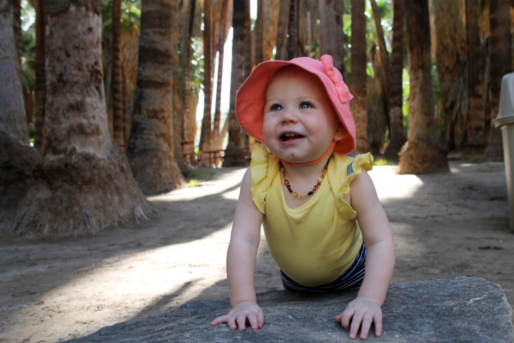 Avery in forest